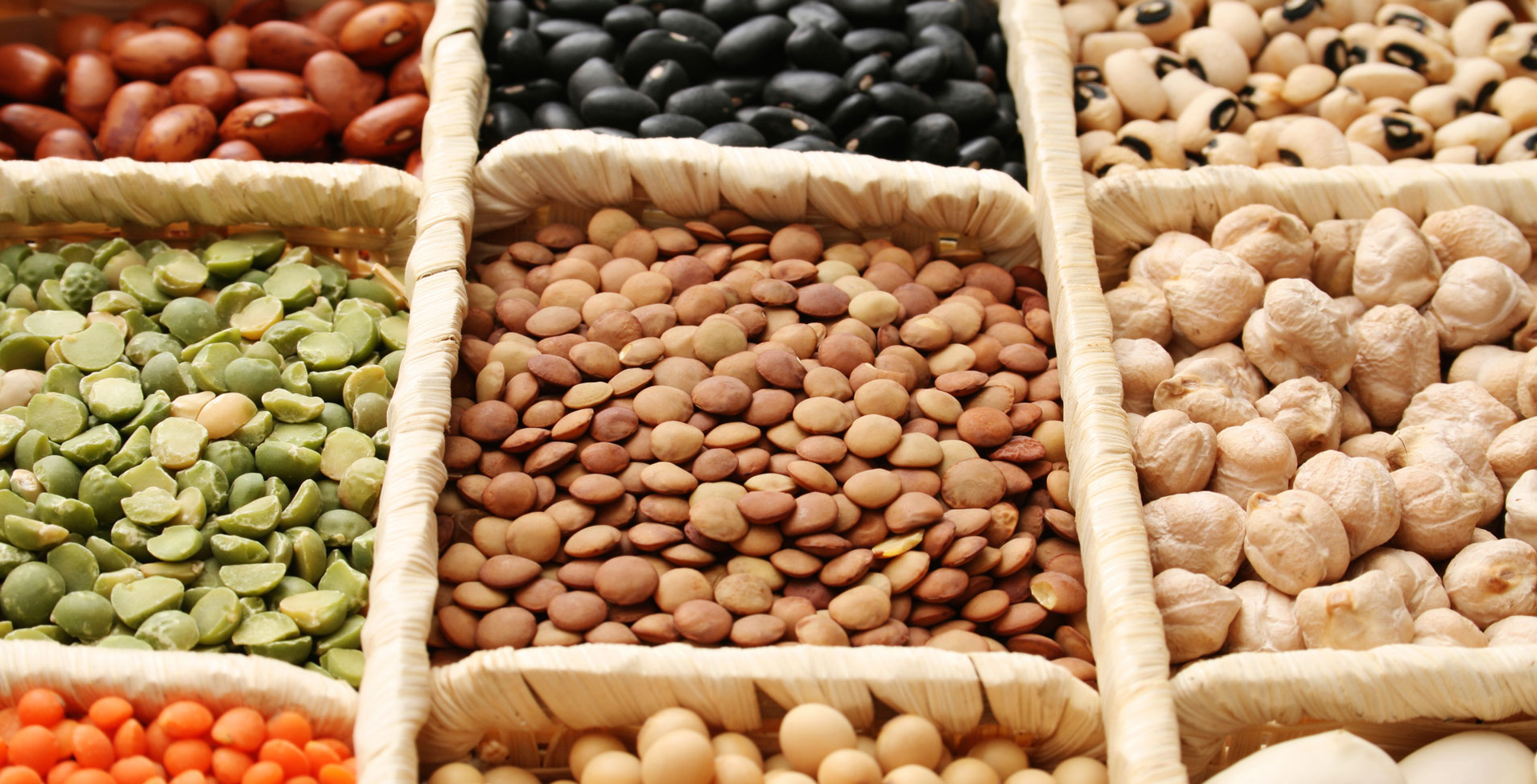 The Best Sources Of Protein For Vegetarians